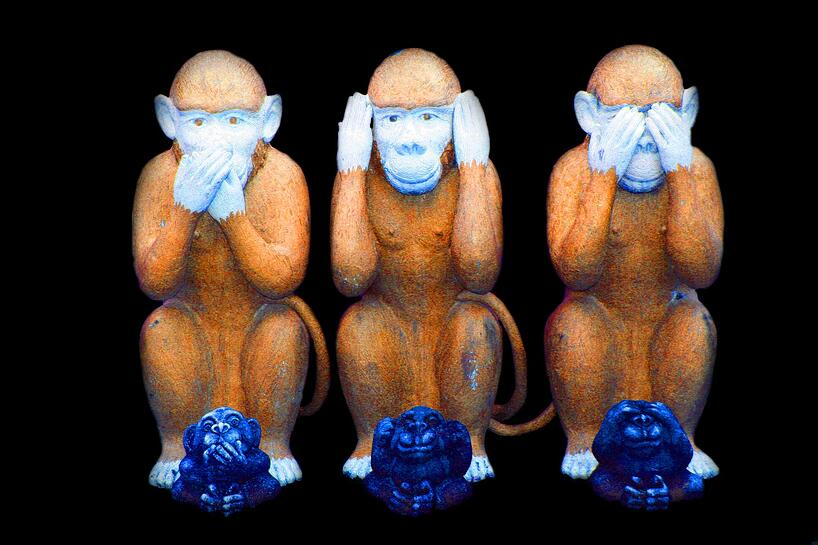 monkey-557586_1920.jpg